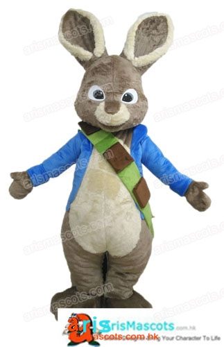 Adult Fancy Peter Rabbit Mascot Costume Cartoon Mascot Costumes for Birthday Party Cartoon Costumes Creat Your Own Mascot